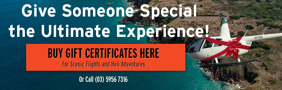 Helicopter Scenic Flight Gift Certificates